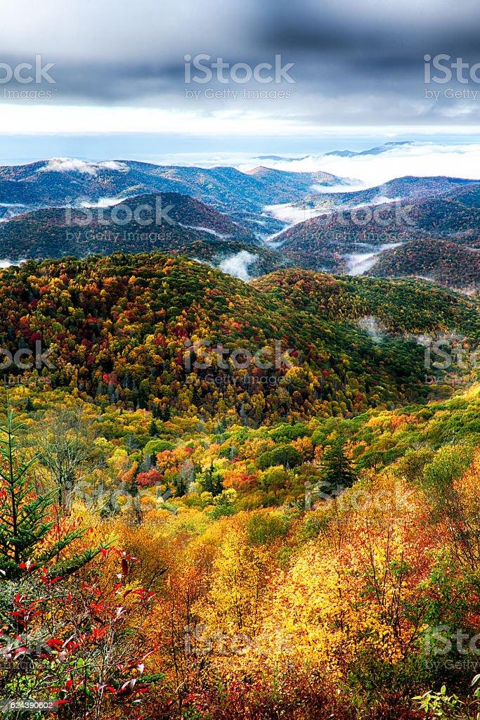 autumn foliage on blue ridge parkway stock photo