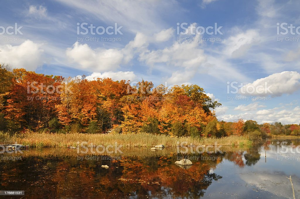 autumn foliage scene in New England, US royalty-free stock photo