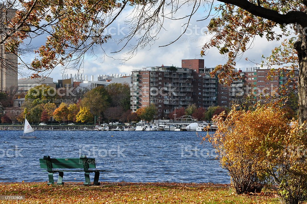 autumn foliage scene in the park royalty-free stock photo