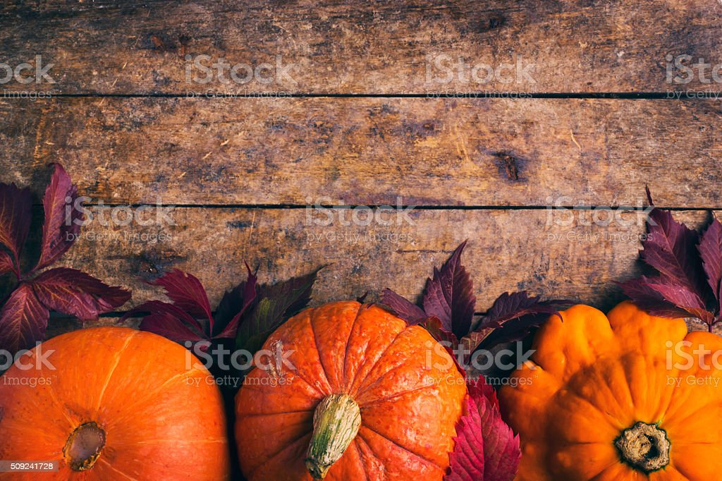 autumn food background with pumpkins and colored leaves stock photo