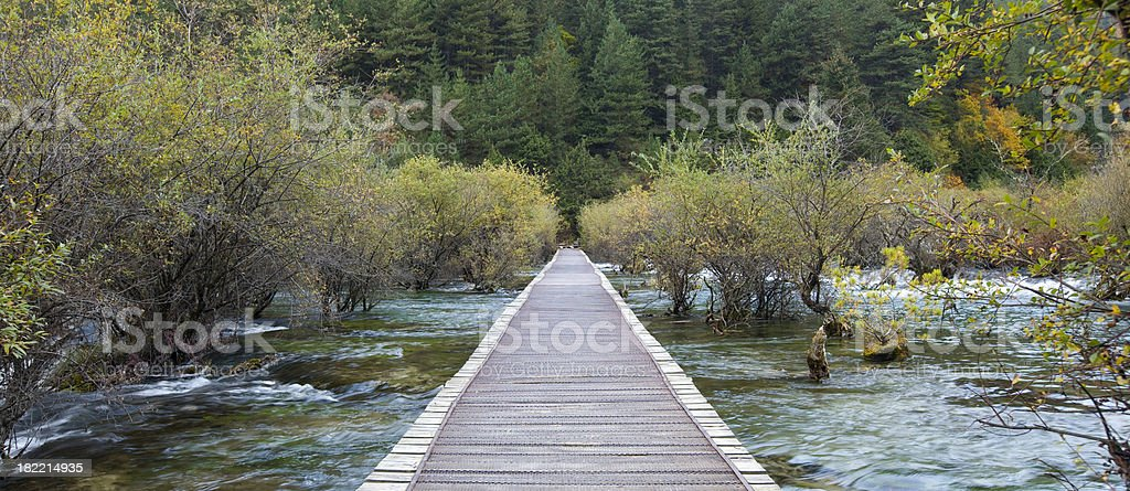Autumn footbridge,forest royalty-free stock photo