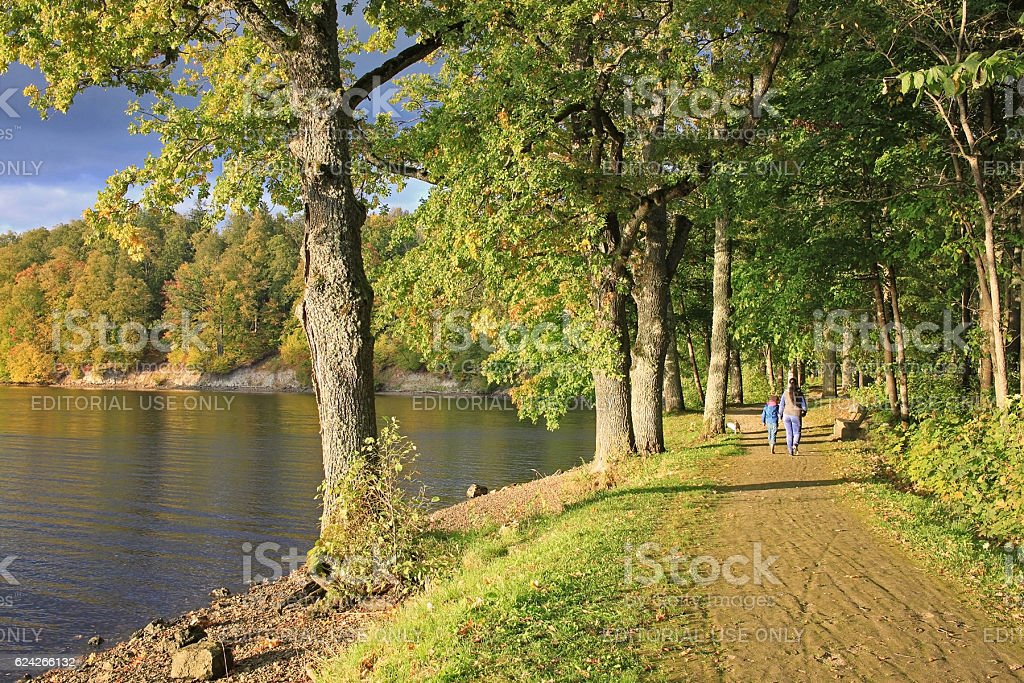 Autumn forest and river stock photo