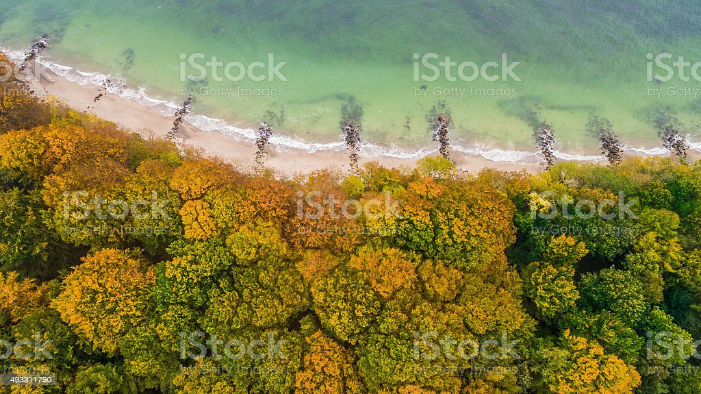 Autumn forest, beach and sea seen from the sky stock photo