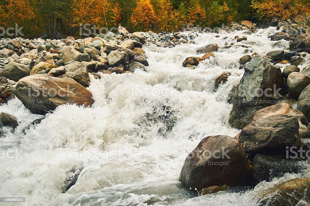 Autumn forest outside Mestia in the Svaneti stock photo