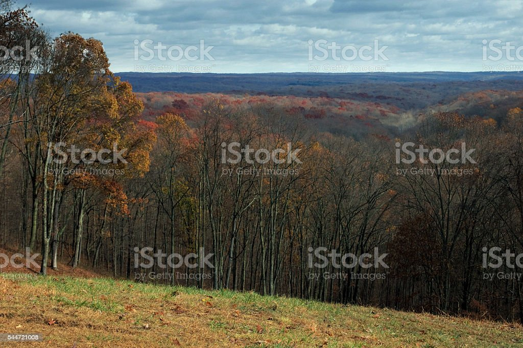 Autumn Forest over Brown County State Park, Indiana stock photo