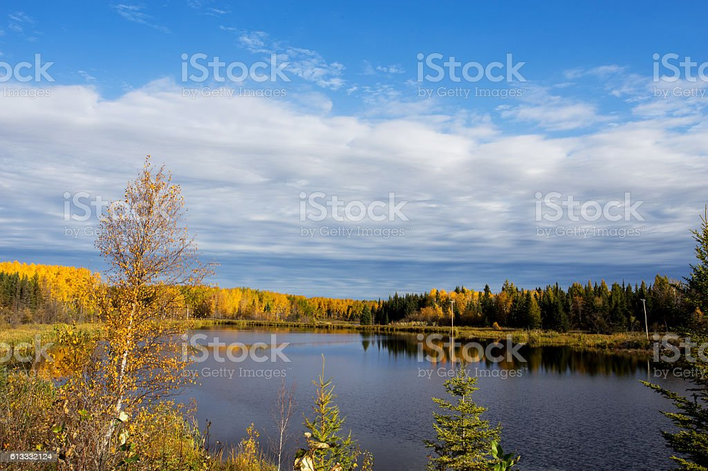Autumn forest surroundind a lake stock photo