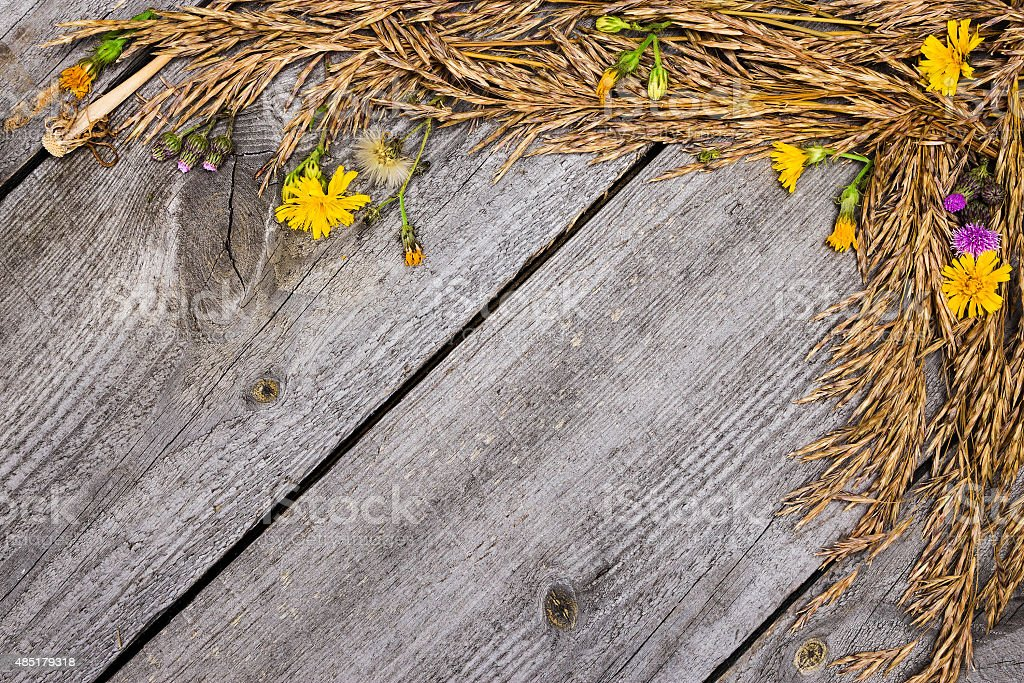 Autumn frame of dried grass and flowers stock photo