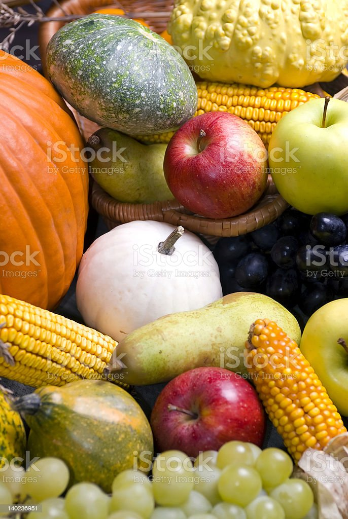 Autumn Fruit 2 royalty-free stock photo