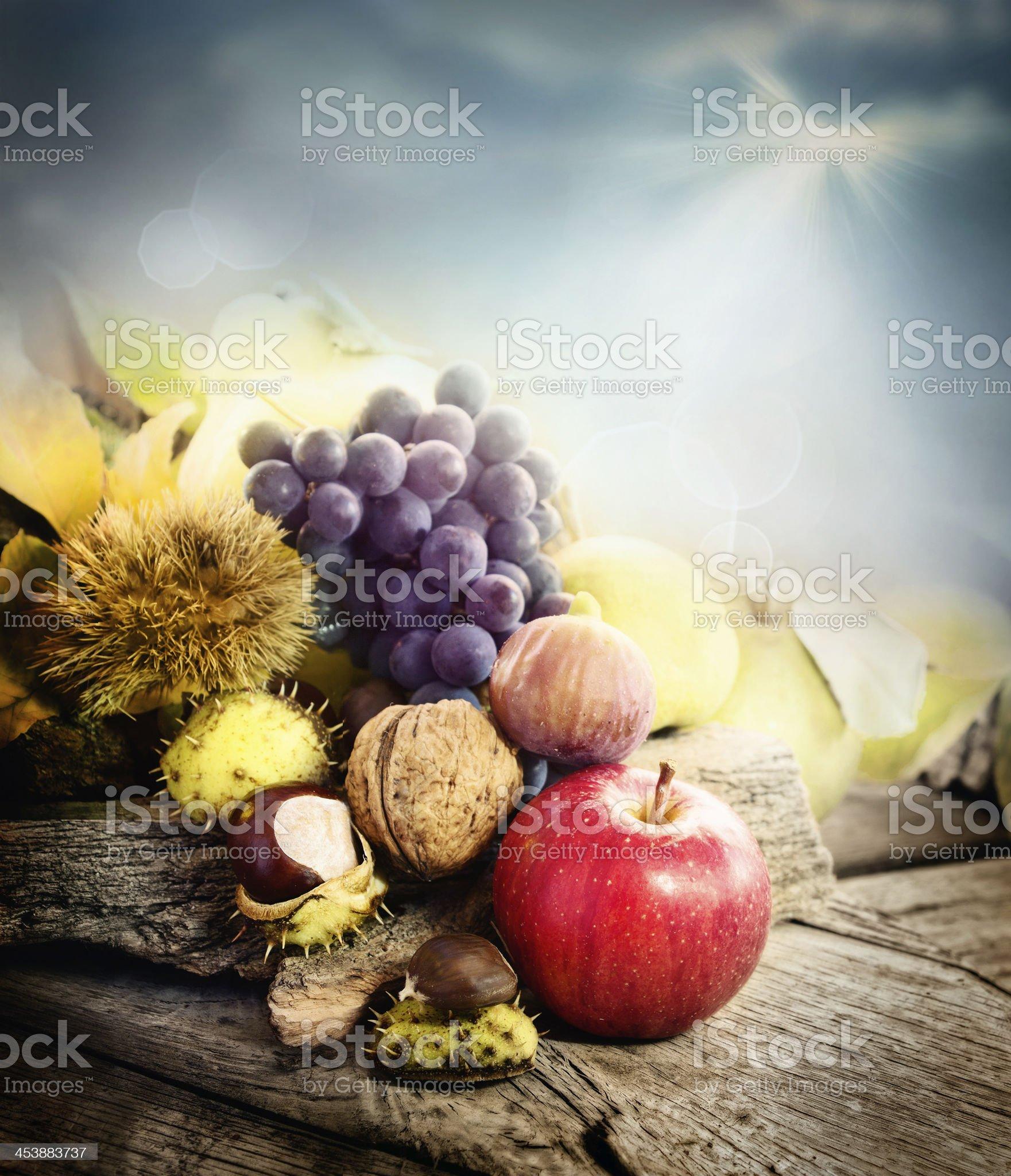 Autumn fruit royalty-free stock photo