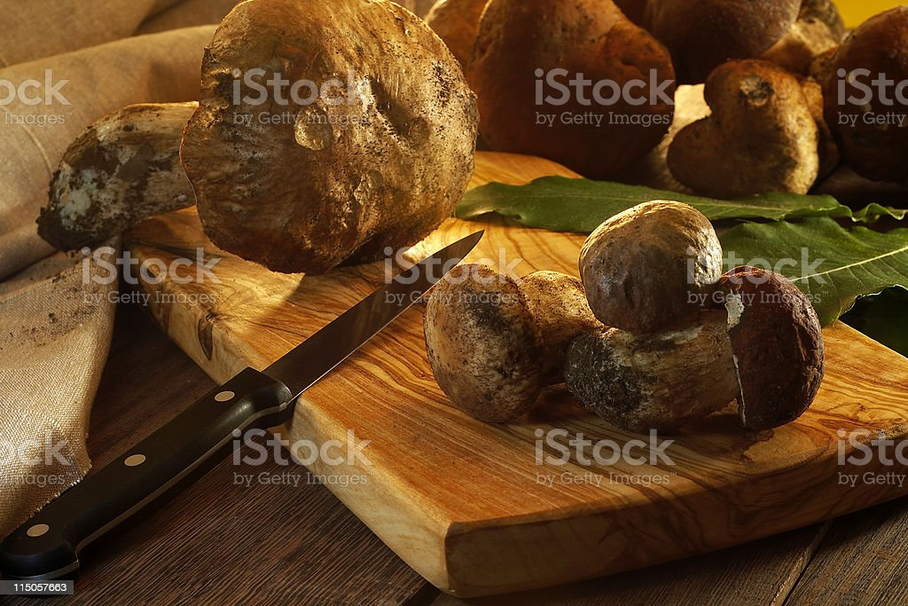 Autumn fruits (mushrooms) royalty-free stock photo