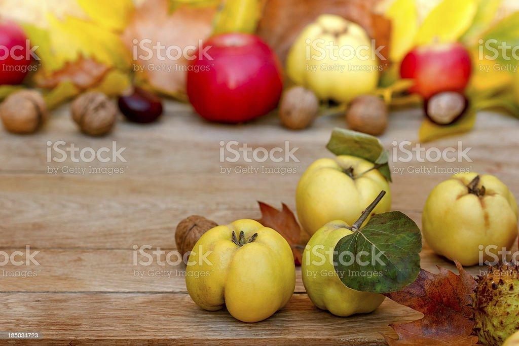 Autumn fruits royalty-free stock photo