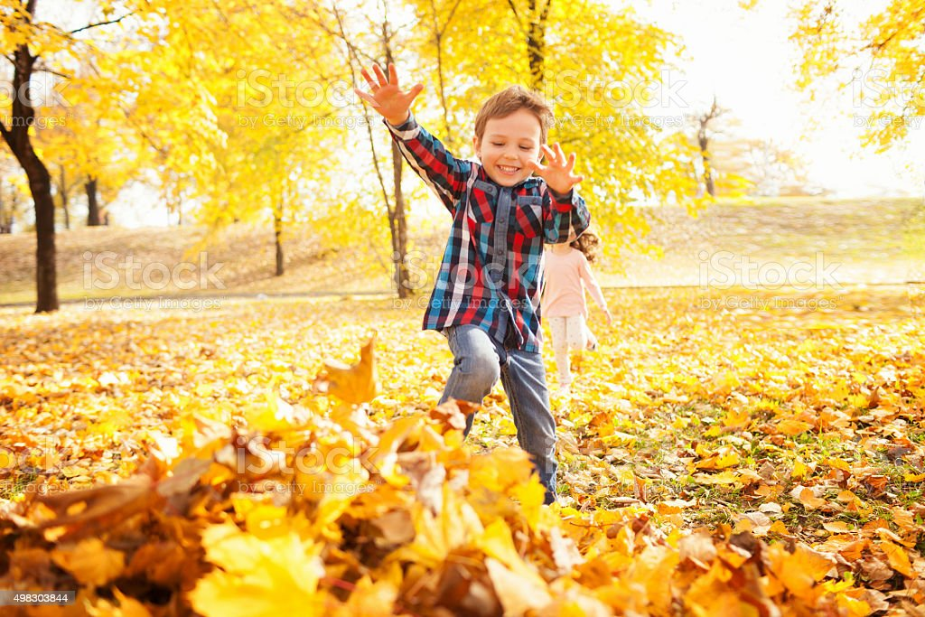 Autumn fun stock photo
