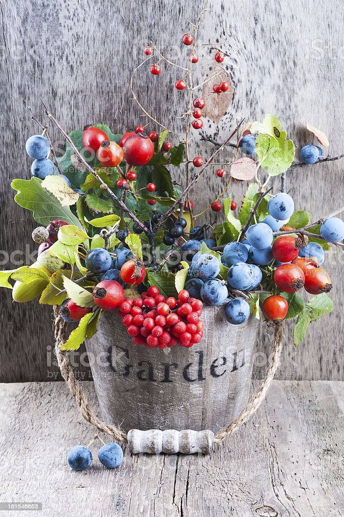 Autumn garden berries on the old wooden background royalty-free stock photo