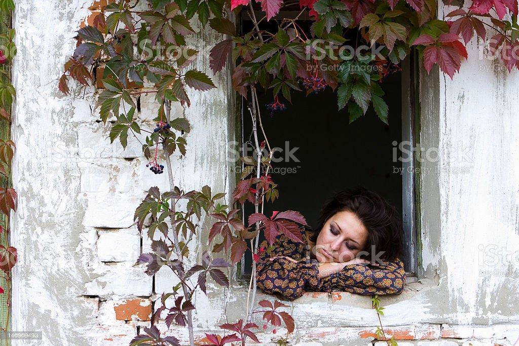 autumn garden royalty-free stock photo