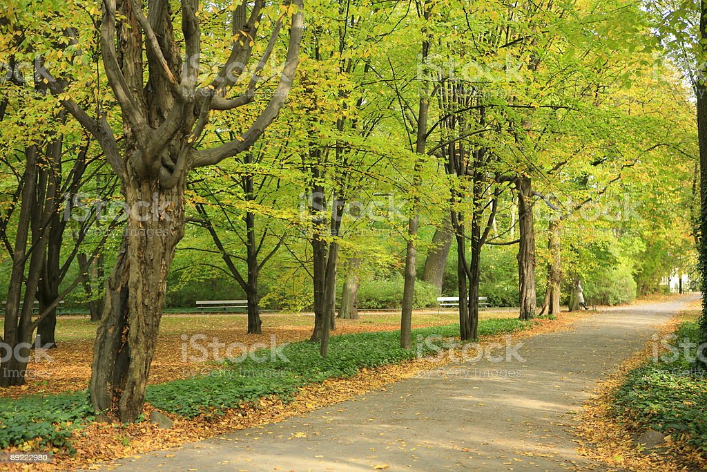 autumn garden view royalty-free stock photo