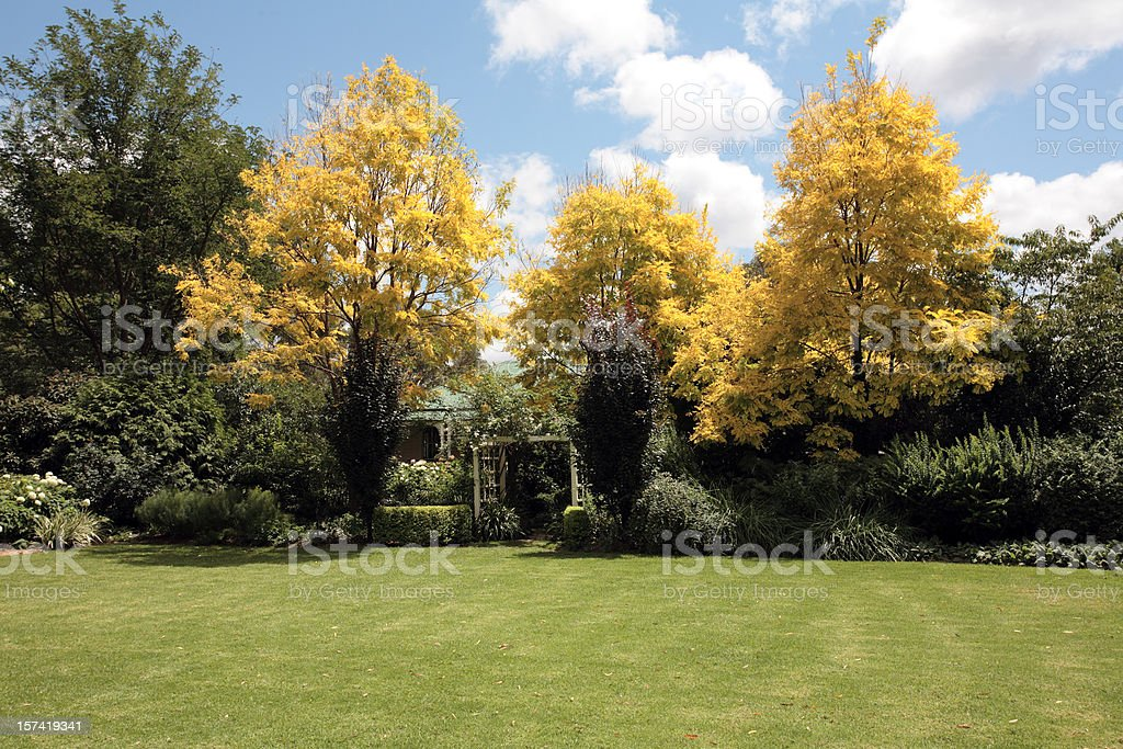 Autumn garden with open lawn and trees royalty-free stock photo