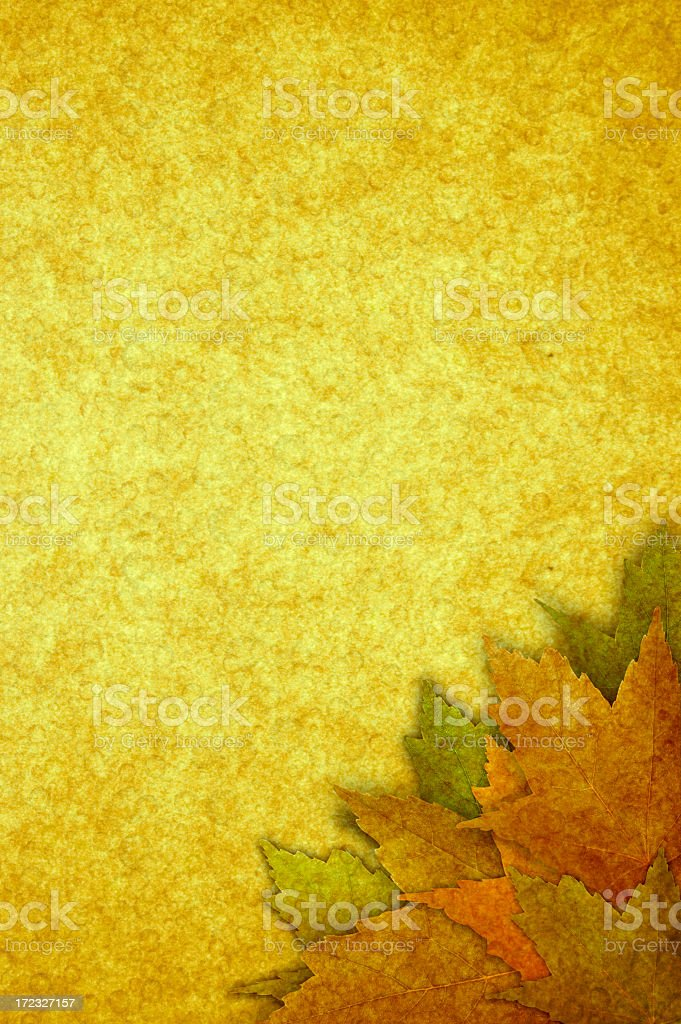 Autumn Gold Background Frame royalty-free stock photo