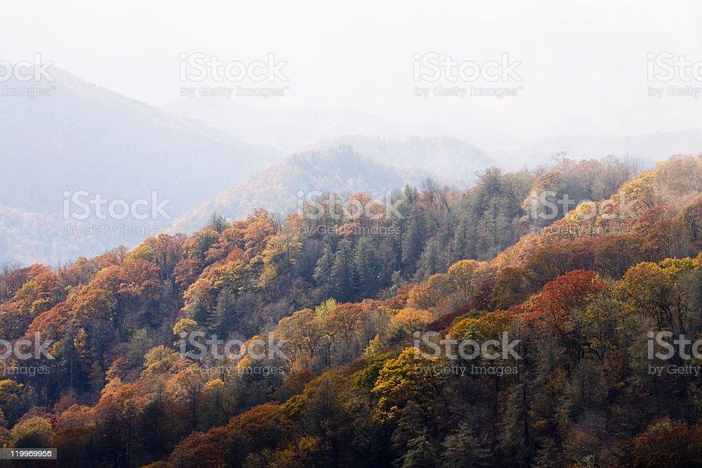 Autumn, Great Smoky Mountains NP royalty-free stock photo
