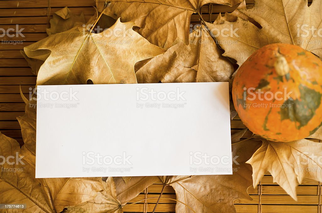 Autumn greeting card for you royalty-free stock photo