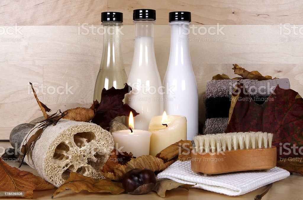 autumn grooming royalty-free stock photo