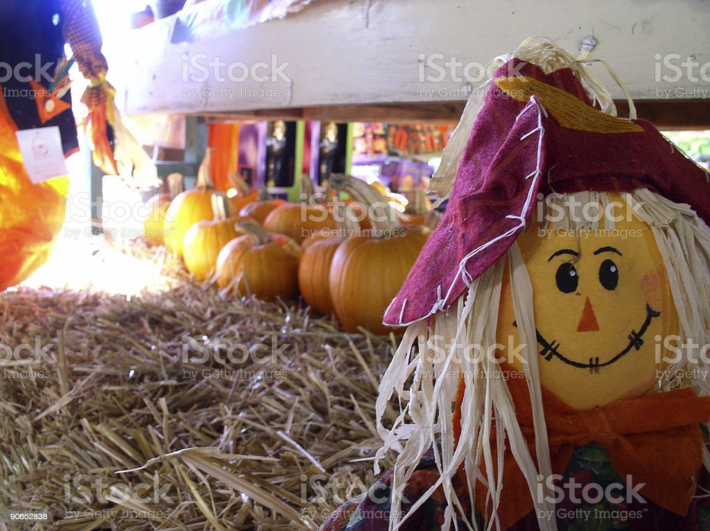 Autumn - Halloween Scarecrow royalty-free stock photo