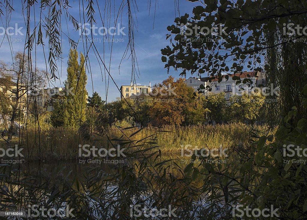 Autumn harmony in city stock photo