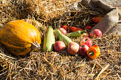 autumn harvest. autumn motives background