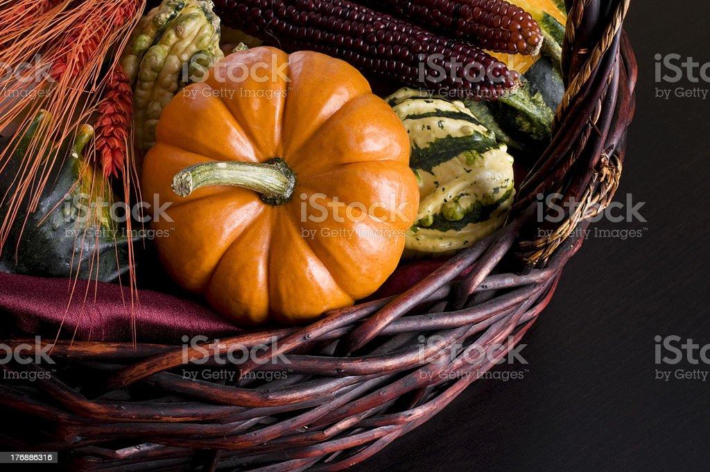 Autumn Harvest Background, Pumpkin and Gourds stock photo