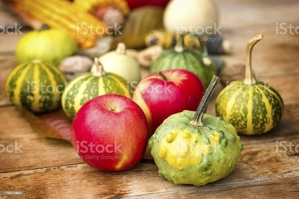 Autumn harvest - fruits and vegetables royalty-free stock photo