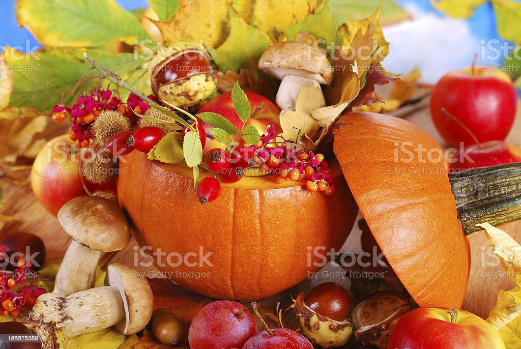 autumn harvest in the pumpkin royalty-free stock photo