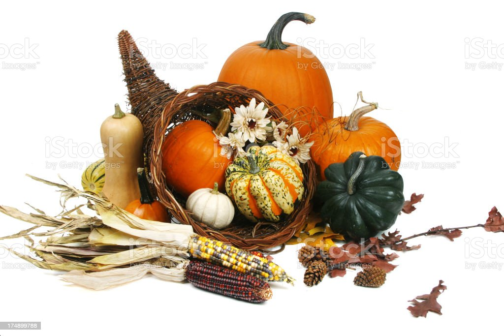 Autumn Harvest Series (isolated on white background) royalty-free stock photo