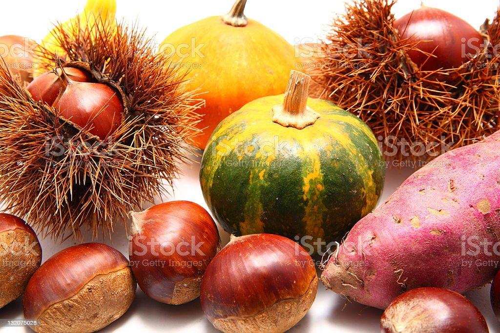 Autumn harvests stock photo