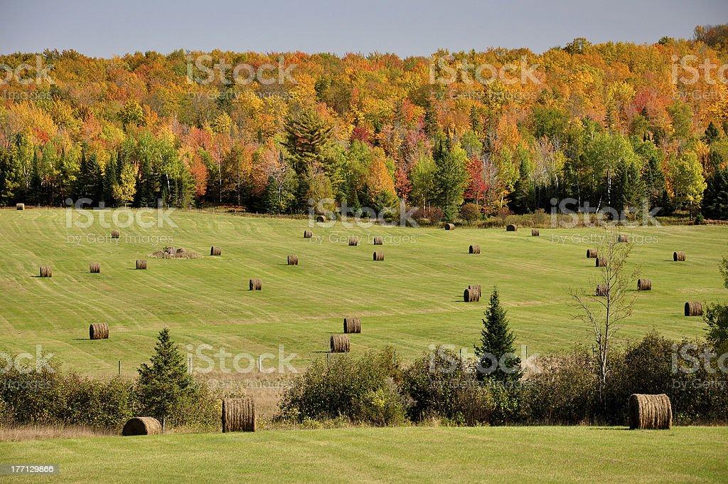 Autumn Hay Bales stock photo