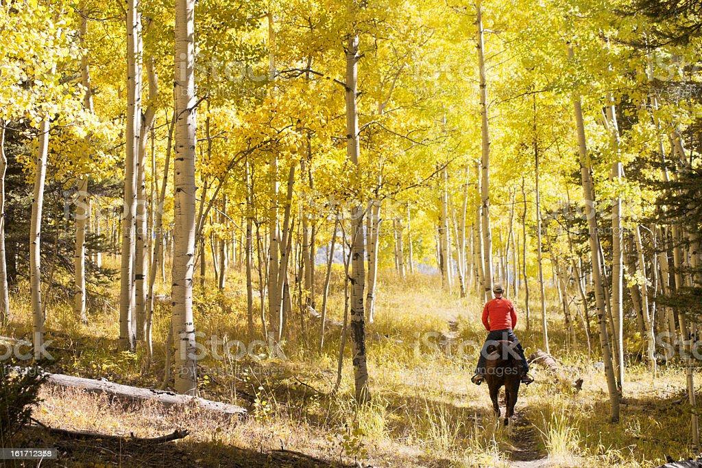 autumn horseback riding landscape royalty-free stock photo