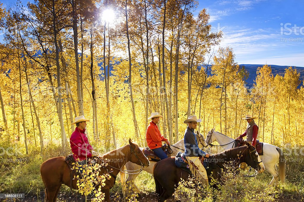 autumn horseback riding stock photo