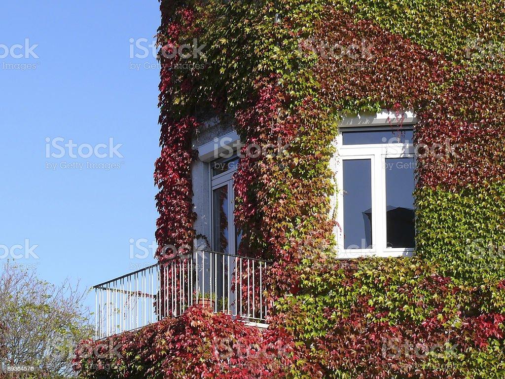 autumn house facade stock photo