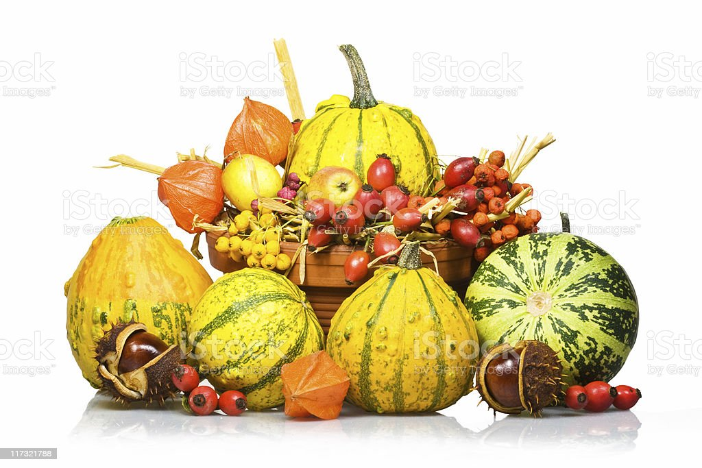 Autumn Impression royalty-free stock photo