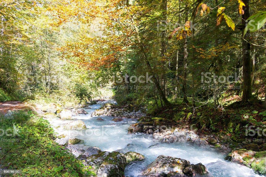 Autumn Impressions at Hammers Creek / Bavaria stock photo