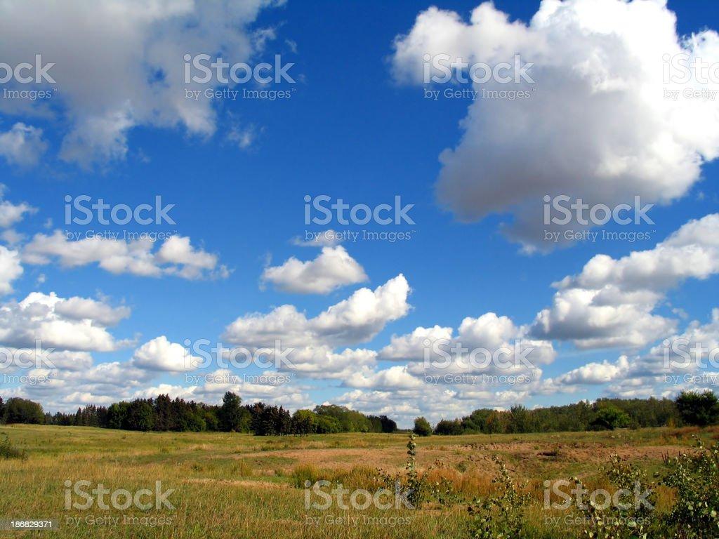 Autumn In Alberta royalty-free stock photo