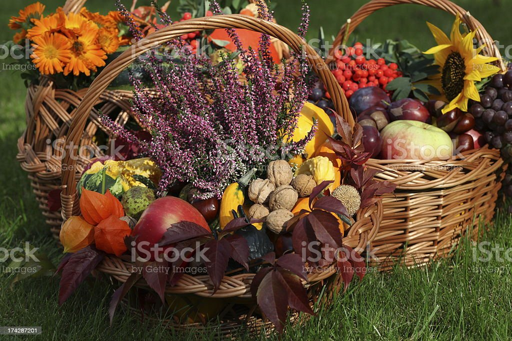 Autumn in basket royalty-free stock photo