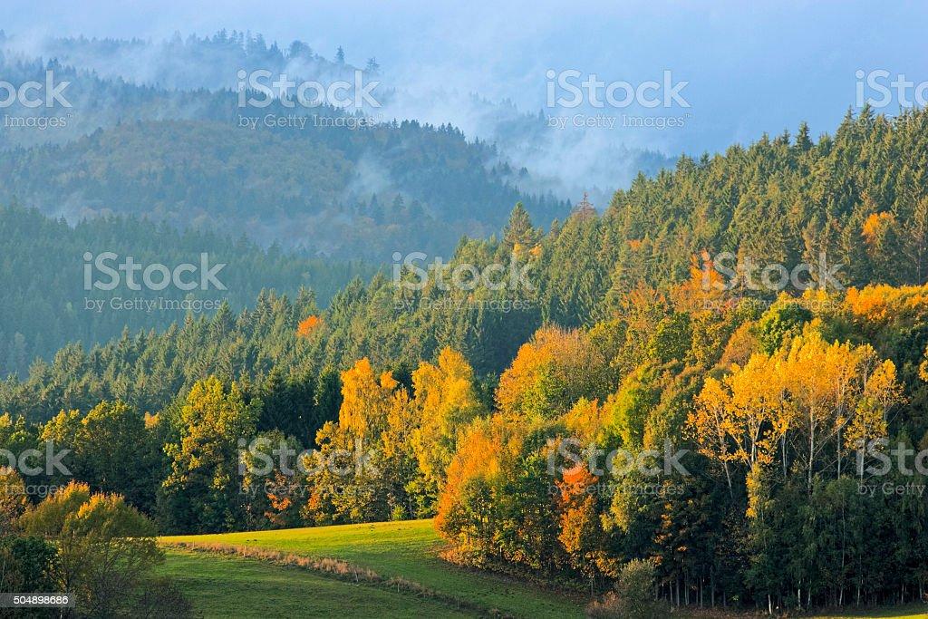 Autumn in Bavarian forest stock photo