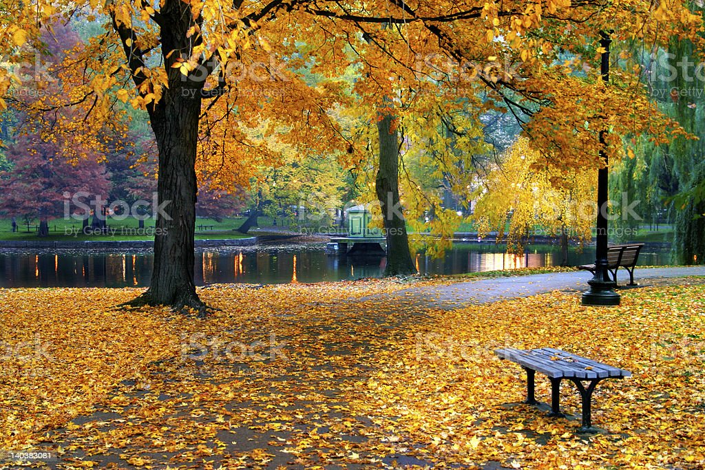 Autumn in Boston Public Garden stock photo