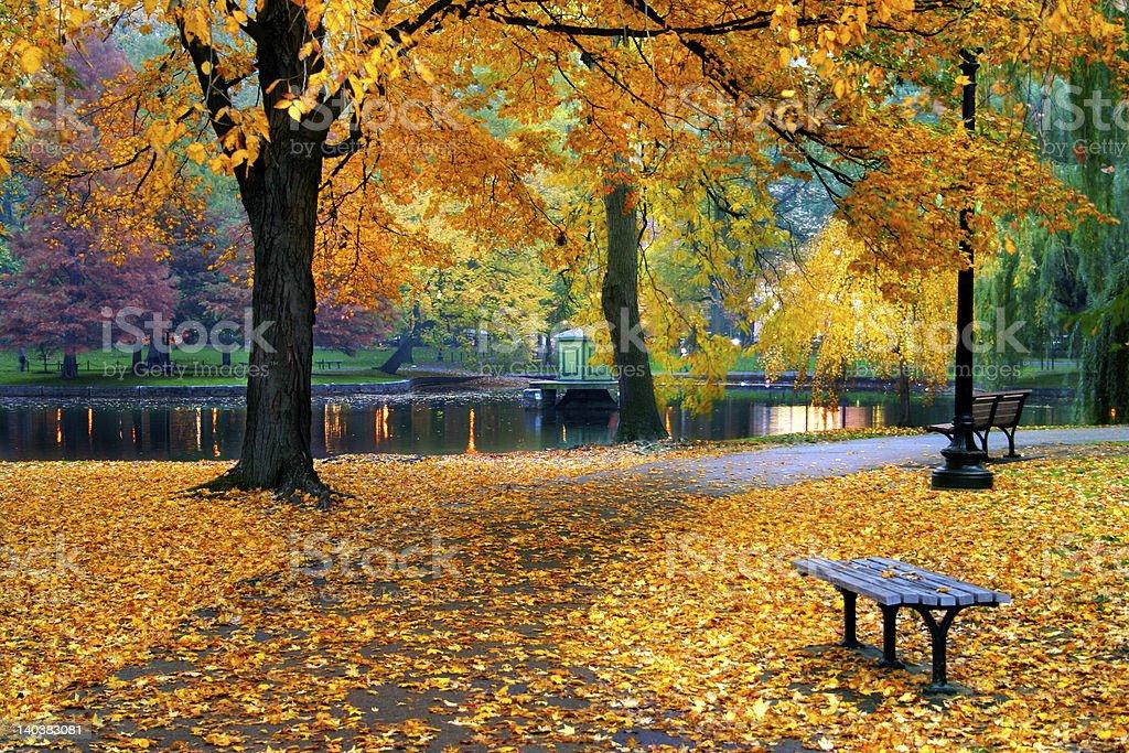 Autumn in Boston Public Garden stock photo