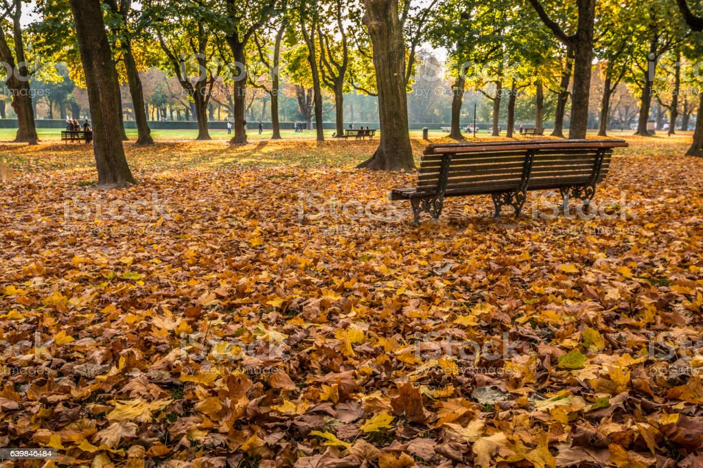 Autumn in Brussels stock photo