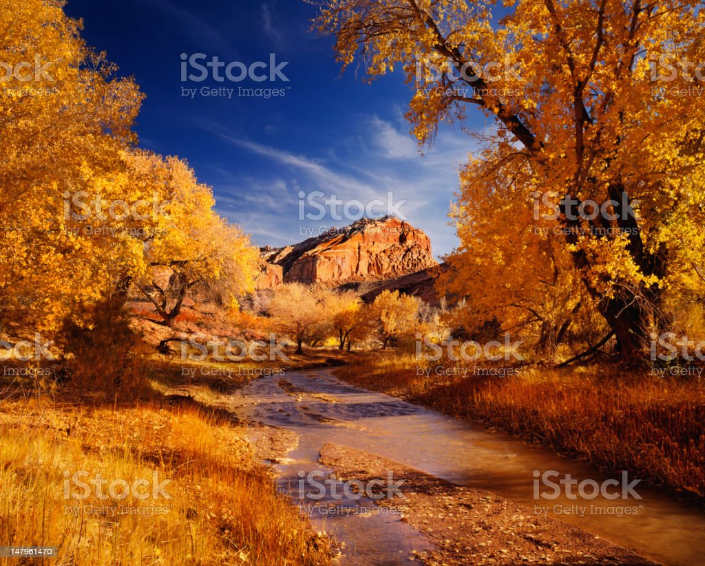 Autumn In Capital Reef National Park royalty-free stock photo