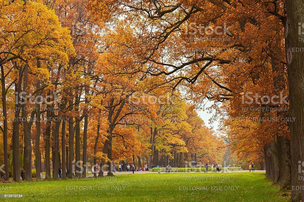 Autumn in Catherine Park in Tsarskoye Selo, near St. Petersburg stock photo