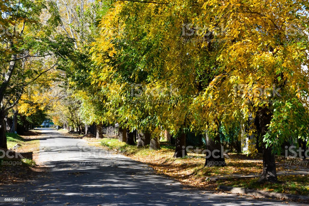 Autumn in City Bell. Buenos Aires stock photo