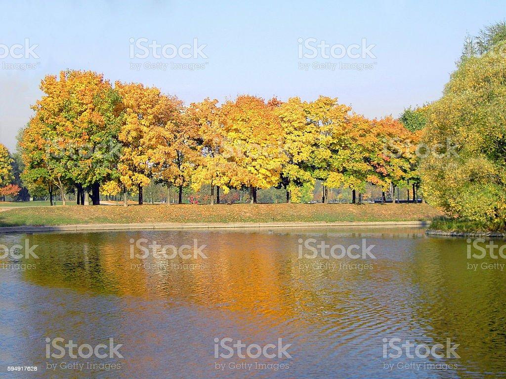 autumn in city park stock photo