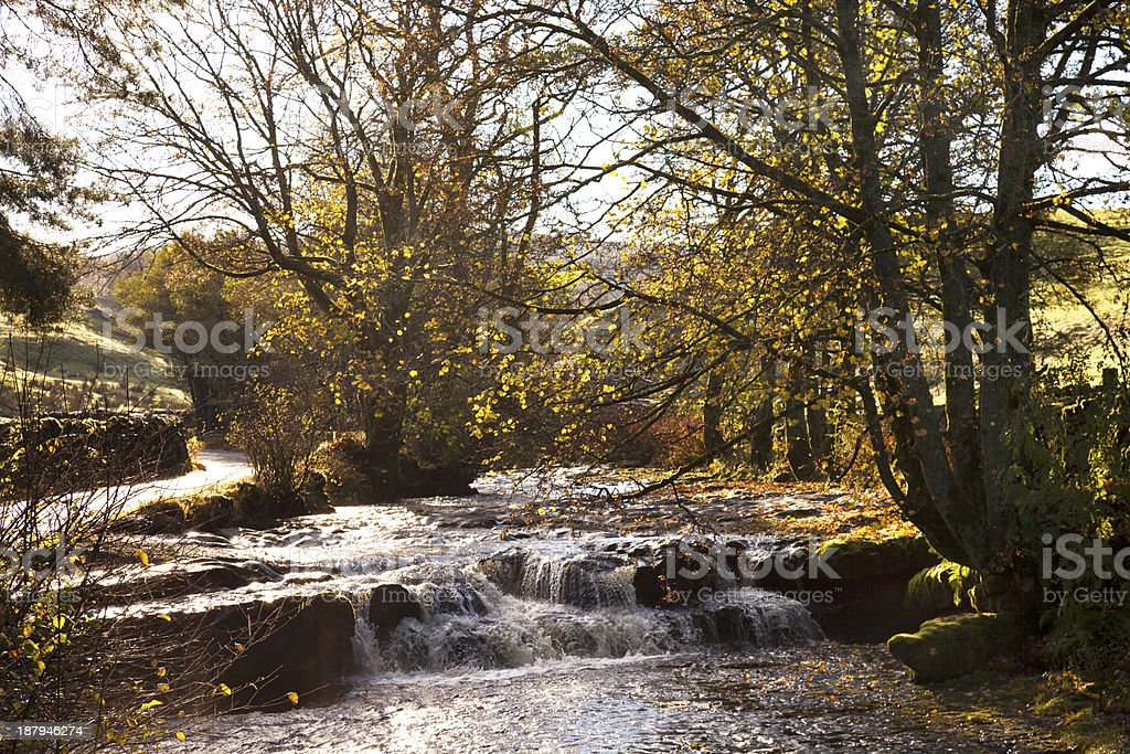 Autumn in Dentdale royalty-free stock photo
