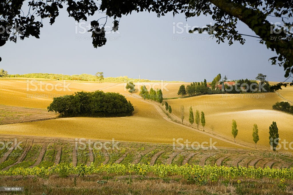 Autumn in Gascogny, France Countryside stock photo